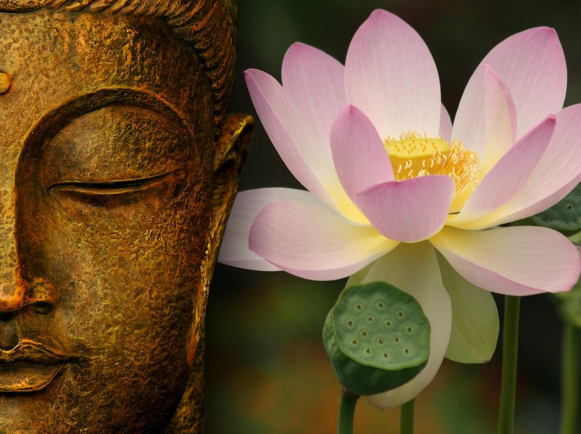 koop uw buddha en andere woninginrichting bij balindonl