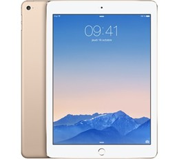APPLE iPad Air 2 WiFi 16 GB Goud refurbished
